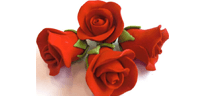 Roses rouges en sucre (18)