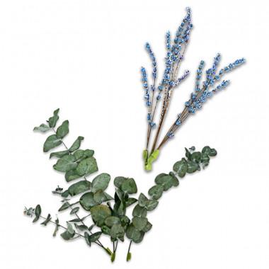 Décoration Fleurs séchées - Eucalyptus et lavande bleu-violet