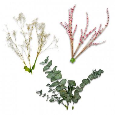 Décoration Fleurs séchées - Eucalyptus, Gypsophile blanche et Lavande rose
