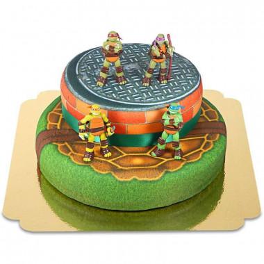 Tortues Ninja sur gâteau deux étages